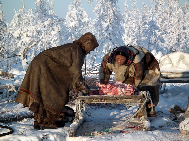 Traditional clothing of the Nenets reindeer herders